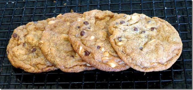 PB2 Chocolate Chip Cookies (Gluten Free)