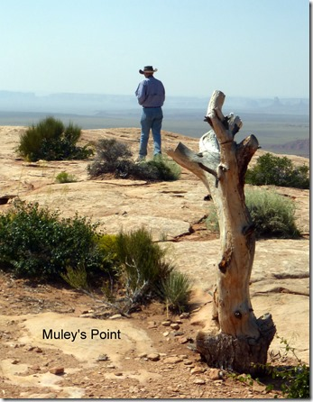 Muley's Point
