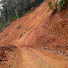 Koridor Silumilit Hutan Lindung Tormatutung