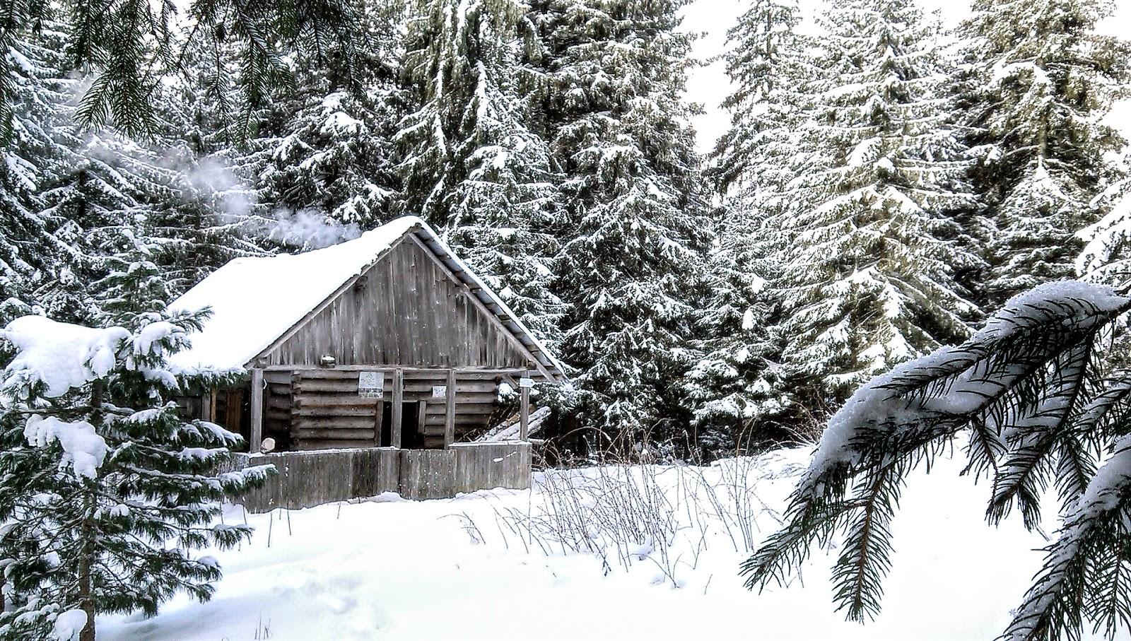 Будиночок в сідлі гір Молода та Яйко Перегінське