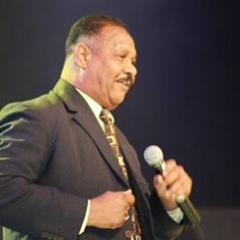 محمود العرفاوي