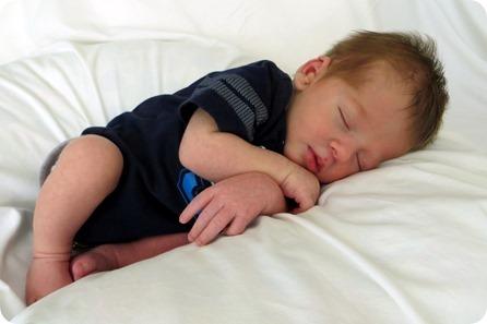 Henry Tad Newborn Portraits