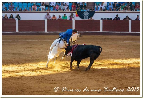 Toros Feria 2015-9917
