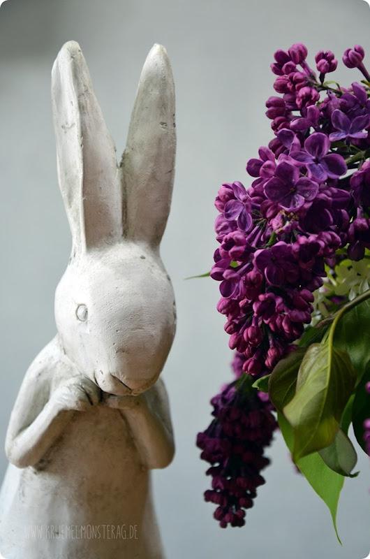 Flieder (04) in lila, flieder und weiß aus dem Garten