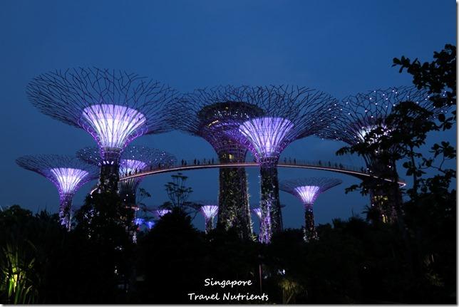 新加坡超級樹燈光秀 (14)