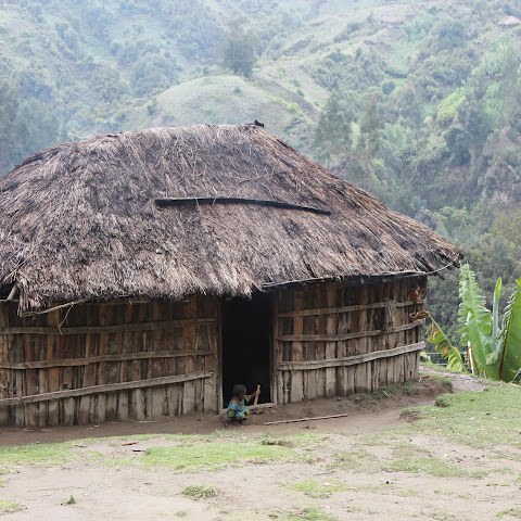 Rural houses are made out of local resources - like wood, reeds and types of bamboo