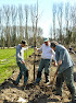 Dreefherstel aan Kasteel Ter Meeren in Sterrebeek