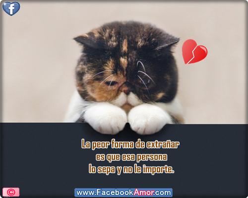 Imagenes De Amor Tristes Para Facebook - Fotos para facebook de amor Imagenes tristes para compartir