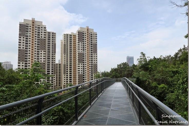新加坡花柏山 (69)