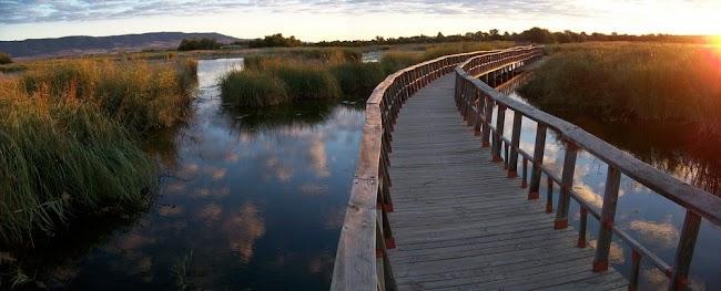 10-lugares-naturales-ver-españa-unaideaunviaje.com-07.jpg