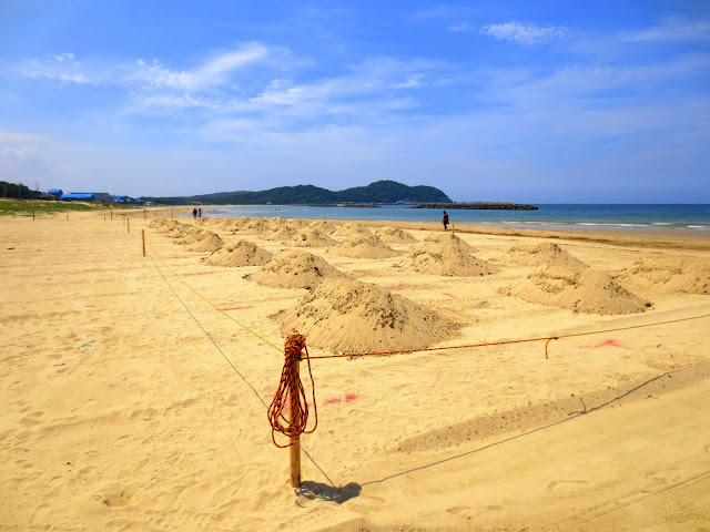 Preparations for the sand castle competition at Shingu beach