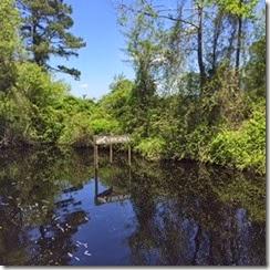 Dismal Swamp Virginia Sign
