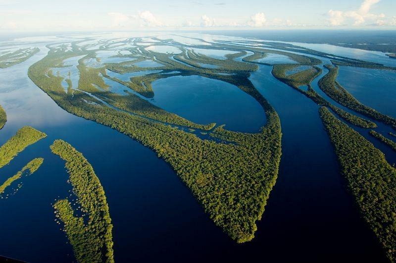 anavilhanas-archipelago-5