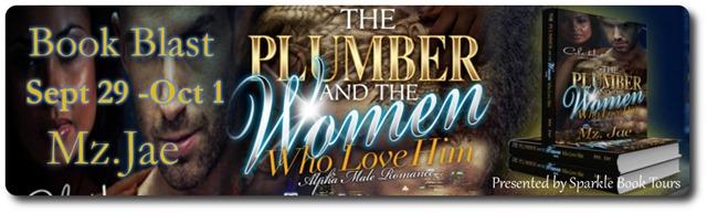 plumber banner