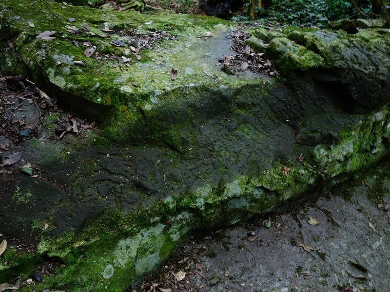 2014_0101-0105 萬山神石、萬山岩雕順訪萬頭蘭山_0480