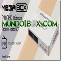 MEGABOX POWER NET P100 PLATINUM