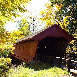Newfield Covered Bridge by Dale Moore - Buildings & Architecture Bridges & Suspended Structures ( covered bridge, historic district, new york, historical, bridge, historic )