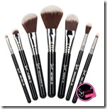 Sigma makeup brush travel kit
