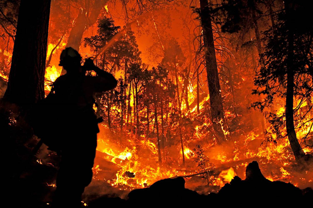 Firefighters battle the Lake Fire in California, 22 June 2015. Photo: Brandi Carlos / NBC News