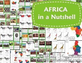 africa nutshell presentation