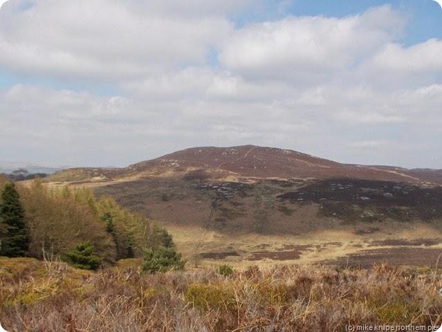 cartington hill