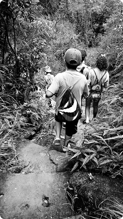 Trail-(2)