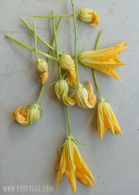 2-zucchini