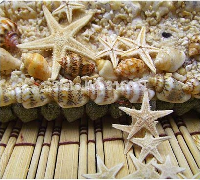 50pcs-Natural-Sea-Star-Wishing-Bottle-Starfish-DIY-Wall-Stickers-Adornment-Material-Free-Shipping