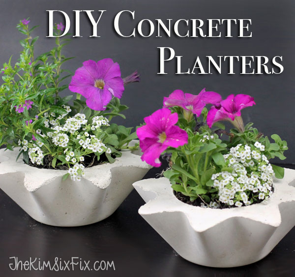 Scalloped DIY concrete planters