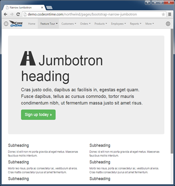 An example of a content page in line-of-business app created with Code On Time.
