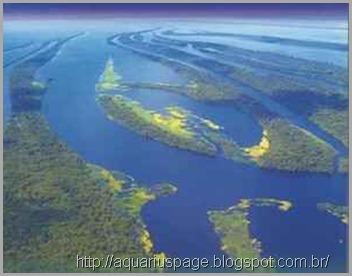 roubo-agua-potavel-brasil