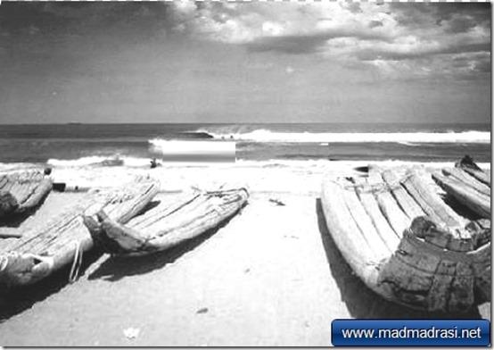 chennai-marina-beach-catamarans