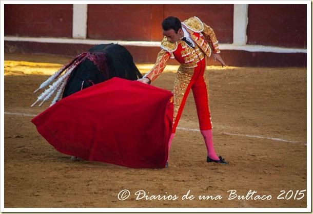 Toros Feria 2015-9804