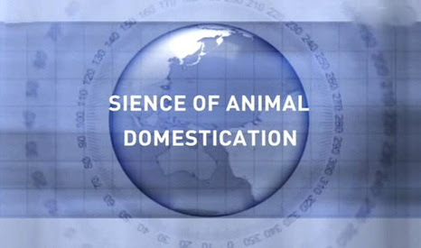 Jak to by�o z udomowieniem zwierz�t / Science of Animal Domestication (2011) PL.TVRip.XviD / Lektor PL