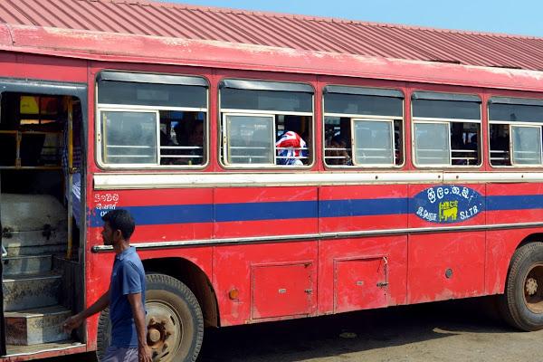 шри-ланка, автобус