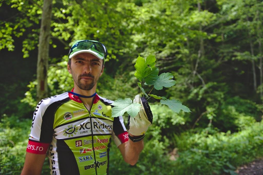 Daniel Rosioru din echipa Vulcanii Noroiosi cautand frunzele arborilor in zona de langa Rudarita. Proba speciala de la intoarcere a presupus gasirea frunzelor a 8 arbori diferiti in padurea din jurul cantonului.