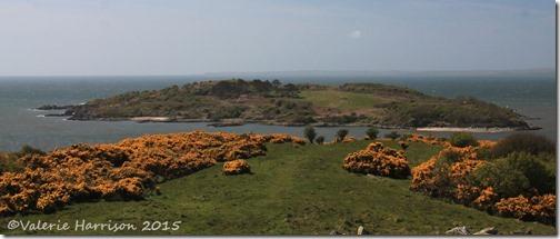 9-Ardwall-Island
