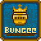 Bungee Knight