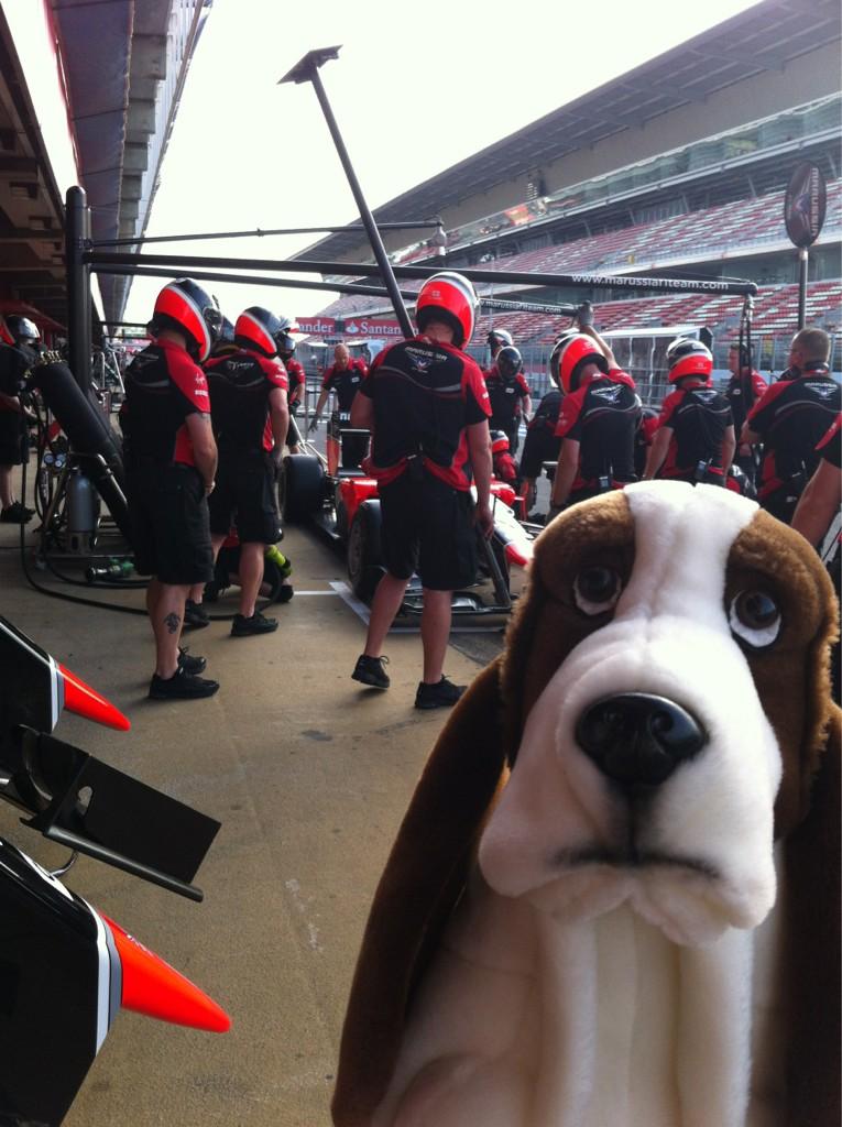 собачка Rastreator у боксов Marussia на Гран-при Испании 2012