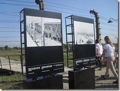 Auschwitz, Birkenau 007