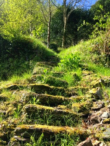 ruined stone steps at Watersmeet memorial garden