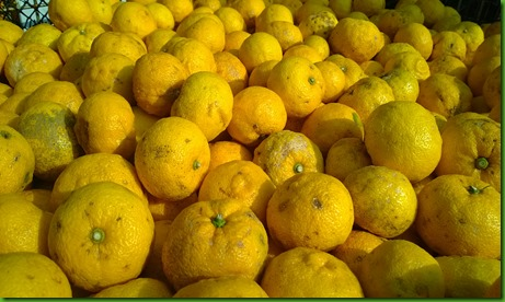 Yuzu frutos pequenos 1