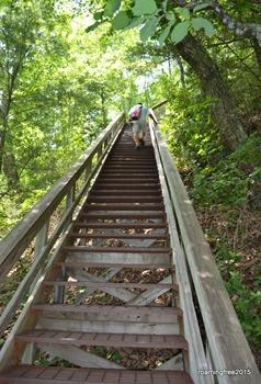 Still climbing!