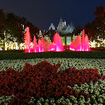 Canada's Wonderland by night in Vaughan, Ontario, Canada