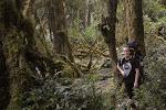 """w drodze powrotnej dumnie szlam w koszulce """"Backpacker Indonesia Makassar"""", która dostalam od Ceby w ramach uznania za wniesienie plecaka pod najwyzsza górę na trasie. koszulka byla jeszcze mokra od potu, mmm! ;)"""