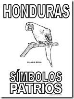 simbolos patrios honduras 4