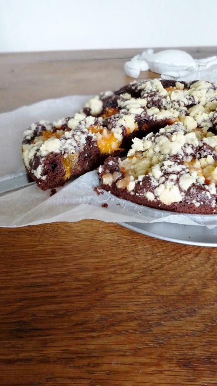 Aprikosen - Schokoladen - Kuchen
