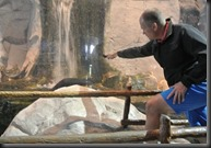 Don't tap the glass on the Otter tank!