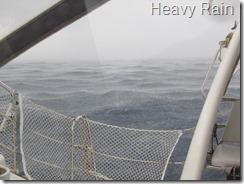 038 Heavy Rain