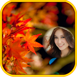 Colorfull Autumn Photo Frames